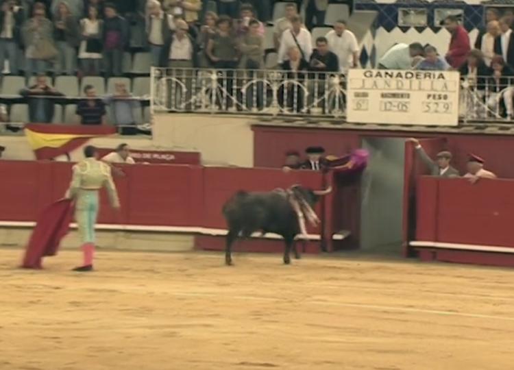 'Timonel', de Jandilla, último toro indultado en Barcelona