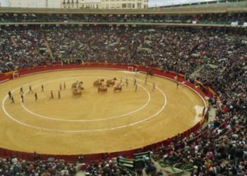Valencia y Castellón irán de la mano para las nuevas fechas de sus ferias