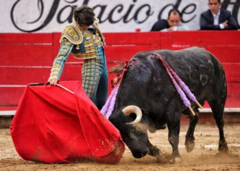Castella indulto Guadalajara 2020