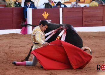 Olivenza, Diego San Román, Feria del Toro