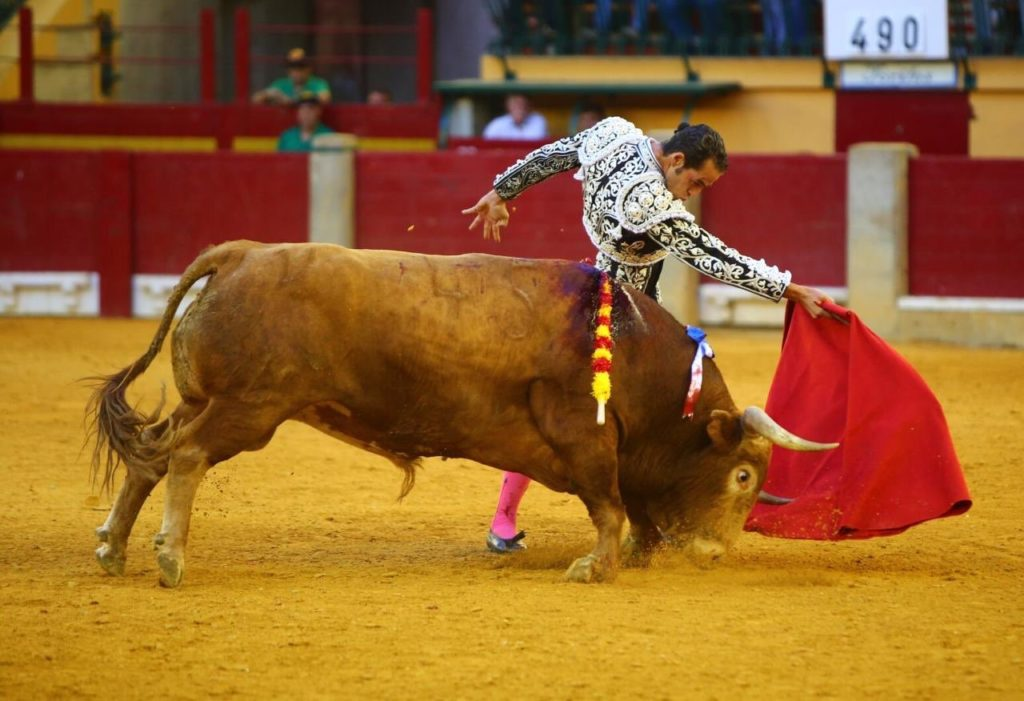Benítez Cubero: el regreso a las corridas a pie como objetivo