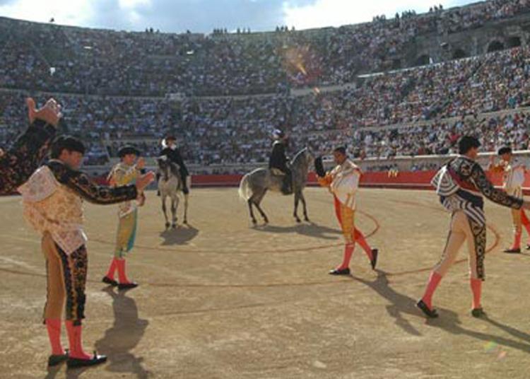 Nimes se queda sin su Feria de Pentecostés por el coronavirus