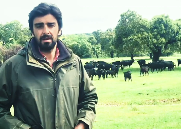 Miguel Ángel Perera ronda los catorce millones de reproducciones en la serie de vídeos
