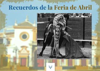 Ojeda Dédalo Sevilla