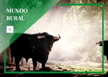 La mejor vacuna: una relación natural con el animal y el medio ambiente