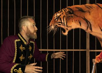 La Justicia de Aragón anula la medida de Podemos de prohibir los animales en el circo