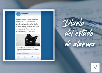 Diario del Estado de Alarma día 58 - 'El humano suceso del gato «Negrito»'