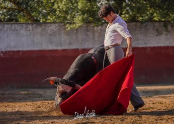 José Garrido, San Martín, tentadero
