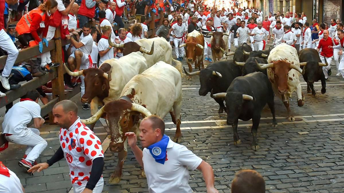 Pamplona encierro cabestros ganadería El Uno