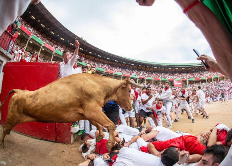 festejos populares navarra