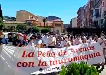 Arenas de San Pedro, Ávila, Paseos Taurinos