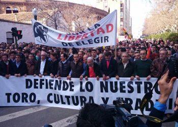 Castellon manifestacion 2015