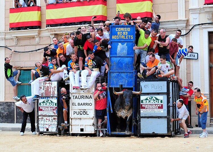 Bous al Carrer, Festejos Populares, cajón, Comunidad Valenciana, Puzol