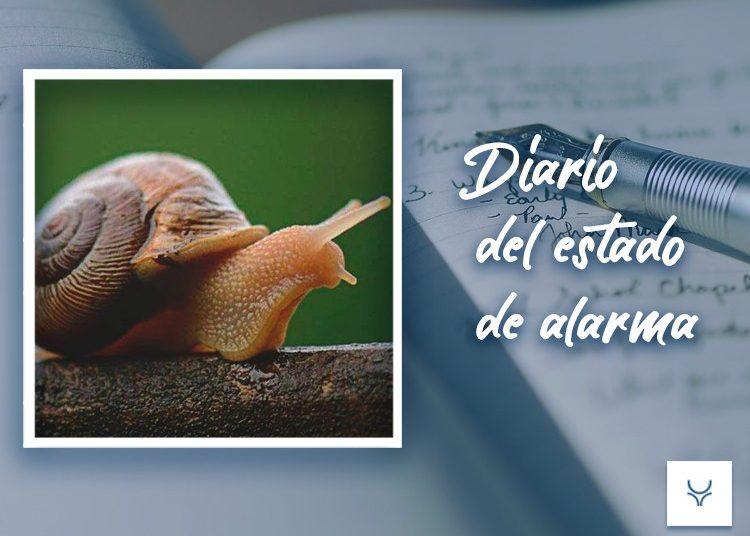 Diario del Estado de Alarma 80, Receta de un plato de caracoles