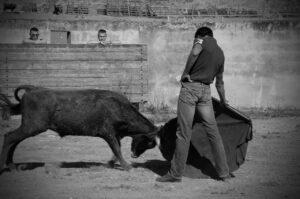 Ripamilán, Aragón, Casta Navarra,