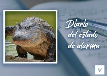 Diario Estado de Alarma 86