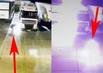 El animalista Peter Janssen se prende fuego al quemar cinco camiones en un matadero