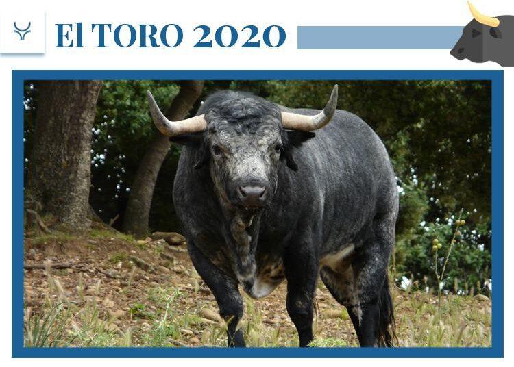 Los Maños, El toro 2020, Santa Coloma, Aragón