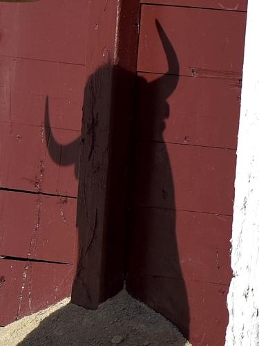 Recurso Detalle sombra toro en tablas