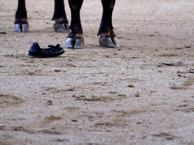 Recurso Detalle patas toro zapatilla torero