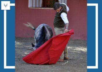Vive el encuentro de Manuel Escribano en Ana Romero