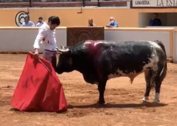 Diego San Román
