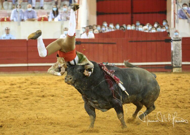 Estremoz, Portugal, rejones, forcados, vuelta de los toros