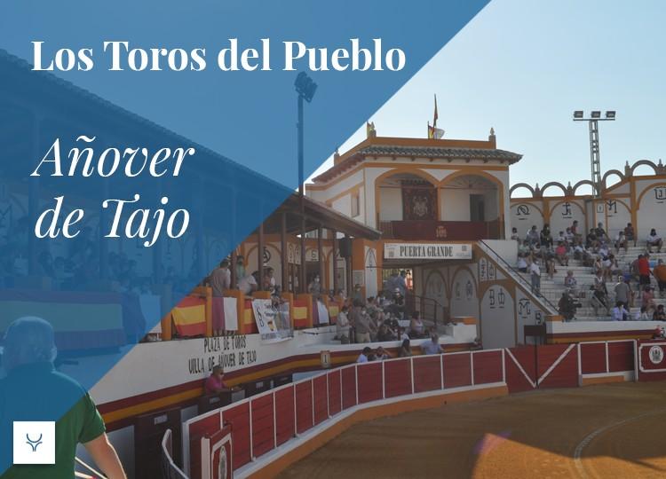 Añover de Tajo, Los toros del pueblo, Toledo