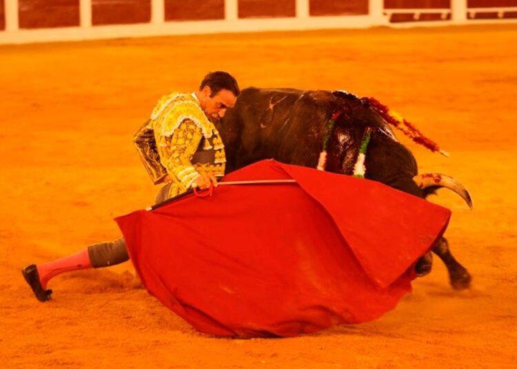 Enrique Ponce, Plasencia, Martes Mayor, Extremadura