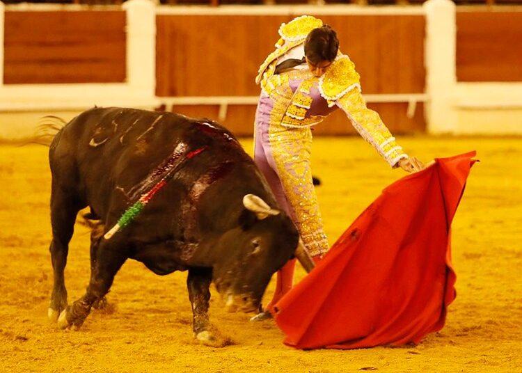 Miguel Ángel Perera, Mérida, Extremadura,