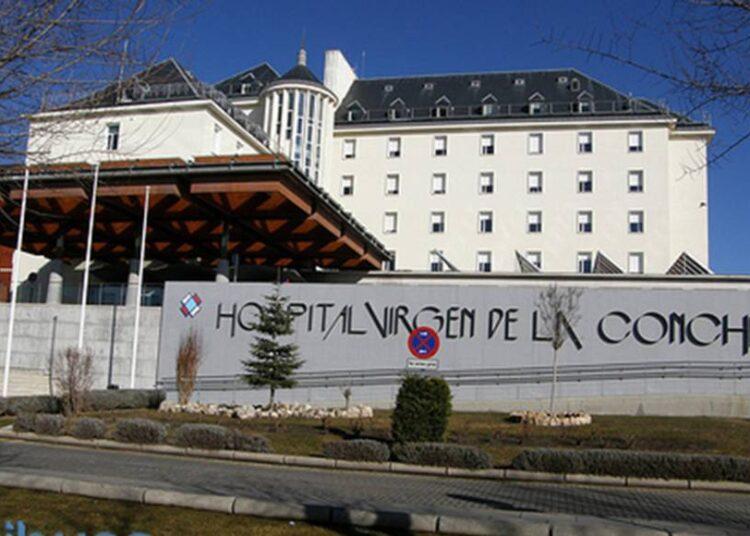 hospital virgen concha Zamora_detail