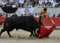 Galería fotográfica de la corrida de Arles