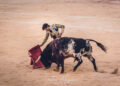 Galería fotográfica de la actuación de Curro Díaz en Nimes