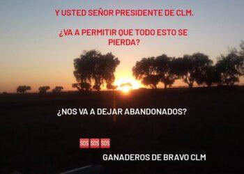 El lunes día clave para los ganaderos de Castilla La-Mancha