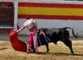 La novillada de Valdellán y Concepción Quijano, en imágenes