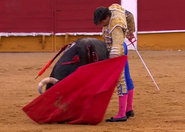 Curro Díaz, Cabra, Natural, Gira de Reconstrucción