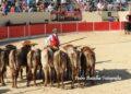 Azambuja, Portugal, rejones, forcados, Andrés Romero, Rui Salvador, Luis Rouxinol hijo