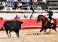 Enamorado uno de los caballos estrella de la cuadra de Leonardo Hernández