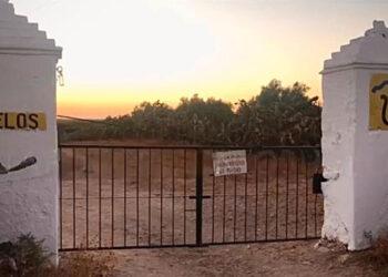 Un atardecer en la ganadería de Benítez-Cubero y Pallarés