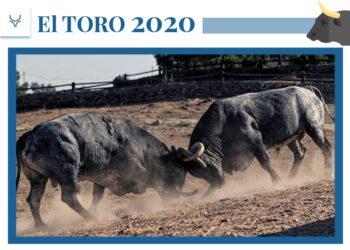Álvaro Martínez-Conradi, ganadero de La Quinta: 'Esta crisis está afectando más si cabe a las ganaderías que estaban anunciadas en las grandes ferias'
