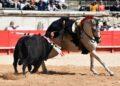 Sol uno de los caballos estrella de la cuadra de Leonardo Hernández