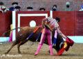 Fuentesaúco, Zamora, Castilla y León, Circuito de Novilladas sin picadores