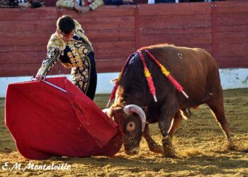 La I semifinal del Circuito de Novilladas Sin Caballos de Castilla y León, en fotos