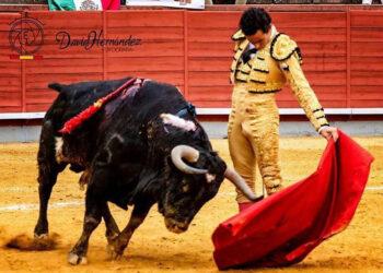 Joaquín Galdós: crecer en tiempos de Covid