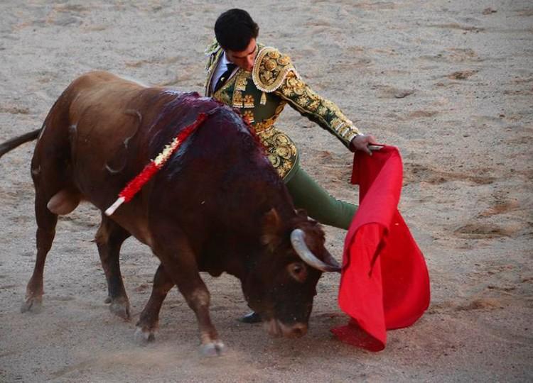 Tomás Rufo, Toledo