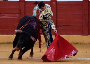 Fortes, Daniel Luque, Montalvo, Estepona, 'Gira de Reconstrución', Fundación Toro de Lidia