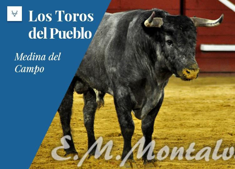 Medina del Campo: variedad y bravura en una reñida concurso