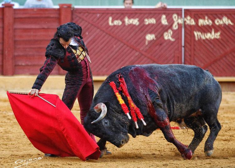 Morenito de Aranda, poso gusto y oficio en Estepona