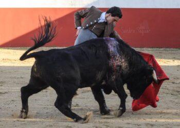 El novillero Sebastián Marín, herido en el campo