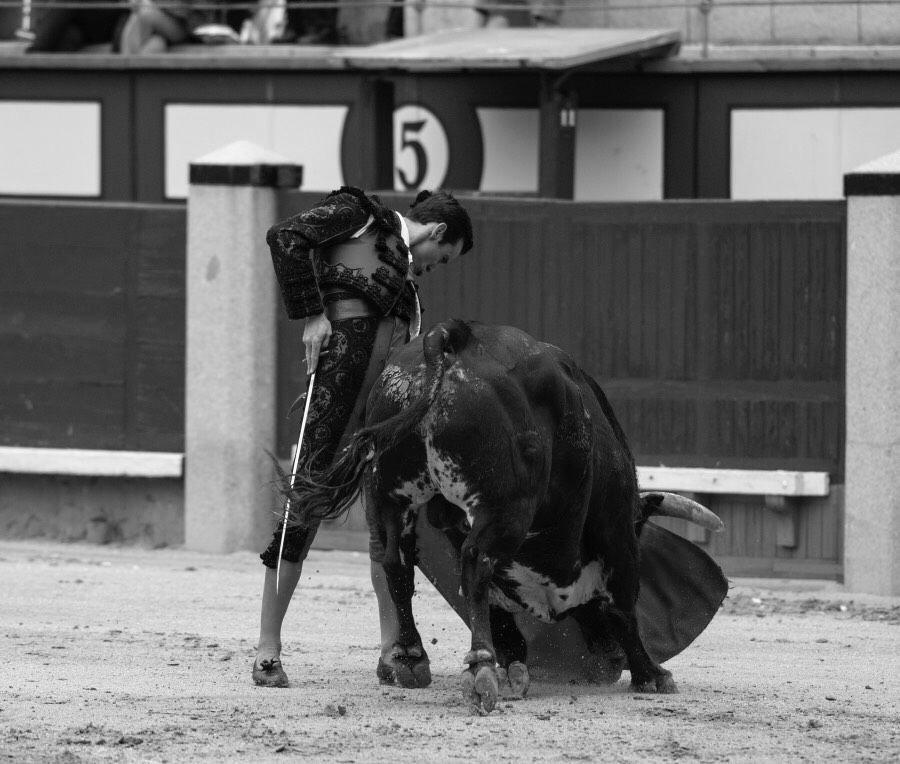 Juan Ortega (II): 'La máxima de un torero siempre debe ser la pureza'